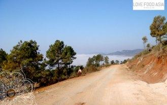 Der Nebel im Tal