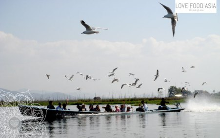Doves guiding a boat on Inle Lake