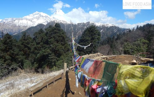 A great viewpoint near Gorapani