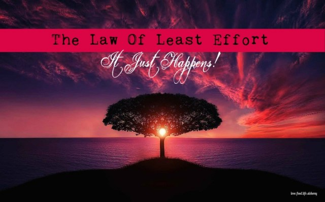 the law of least effort
