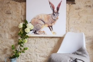 hare canvas posterlounge