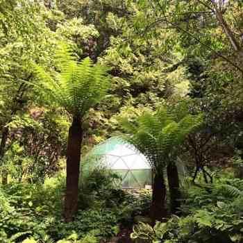 Attadale Gardens, Wester Ross