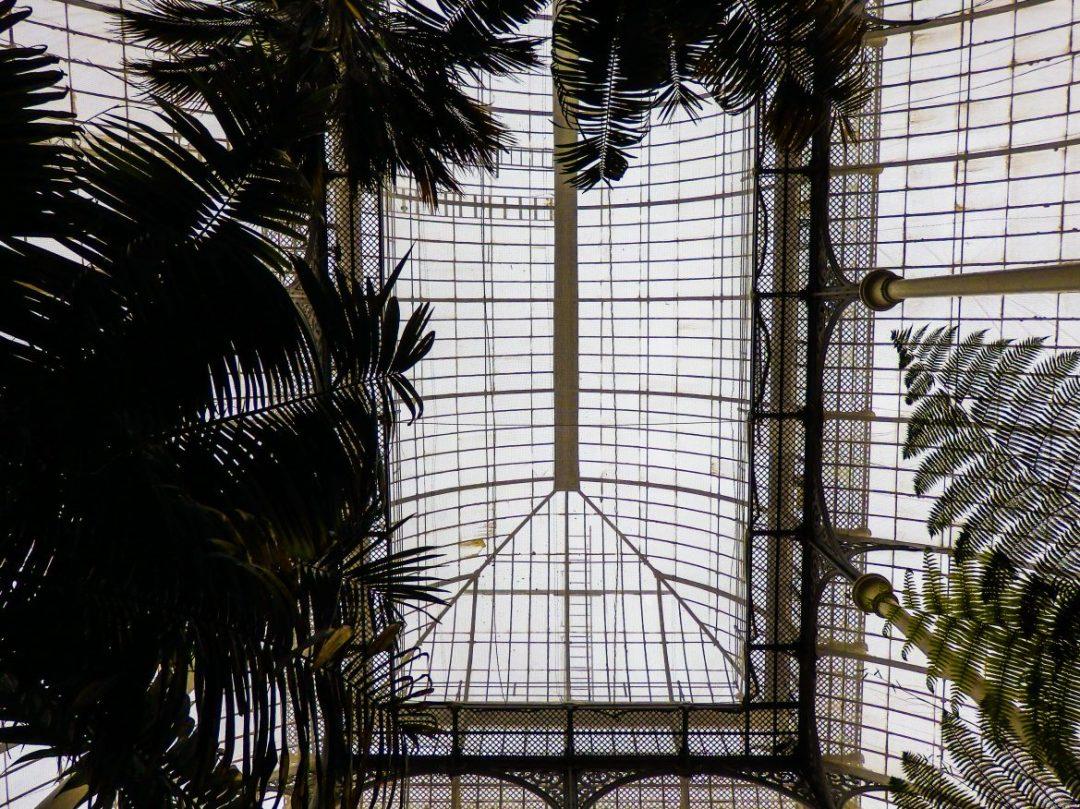 Edinburgh glasshouses