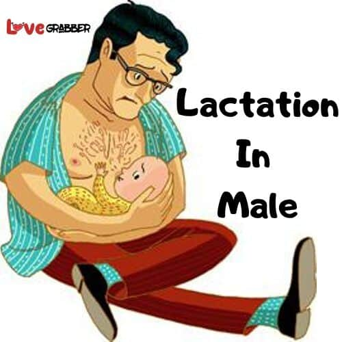 lactation in male