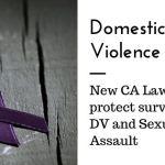 Domestic Violence Awareness & Advocacy In California
