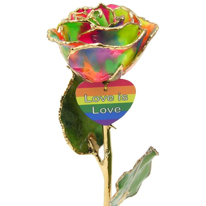 8 LGBT Pride Rainbow Rose Gift Love Is A Rose