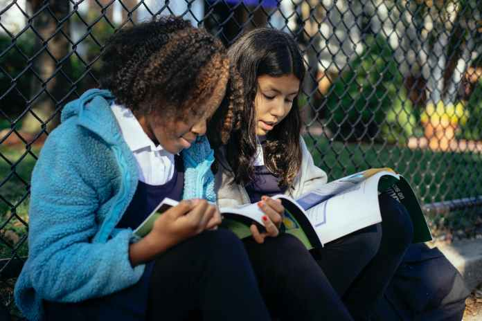 attentive diverse schoolgirls reading textbooks in autumn park