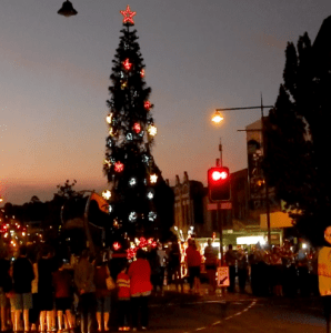 Lighting of Tree