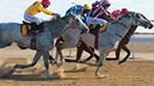 birdsville-races
