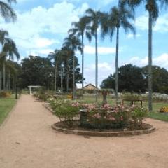 State Rose Garden 1