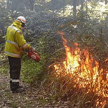 hazard-reduction-burn