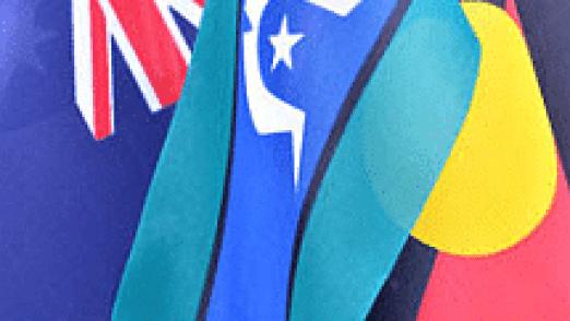 trc flags