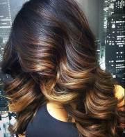 blonde and dark brown hair color