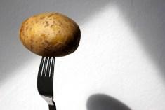 Kartoffel gekocht