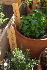 Easiest Two Step Garden Markers