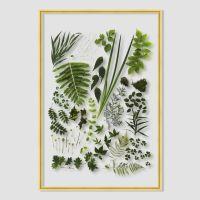 Framed Floating Botanicals & Feathers // DIY Inspo ...