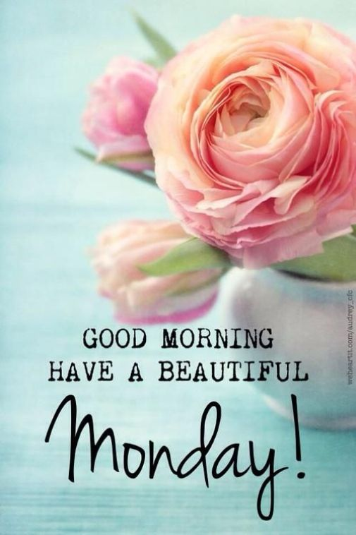 Good-Morning-Quotes-and-Sayings-11