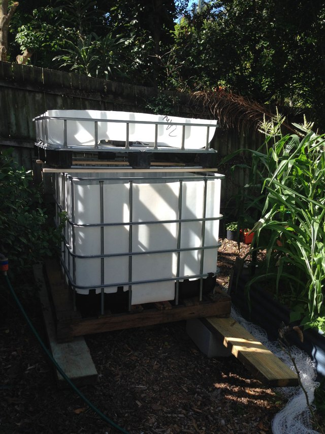 Create your own simple chop and flip aquaponics system