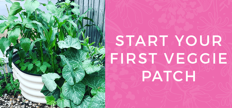 Start your first Veggie Patch