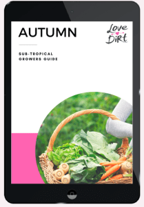 Autumn Growers Guide