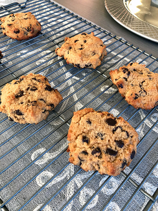 Cooling Grain Free Chocolate Chip Cookies