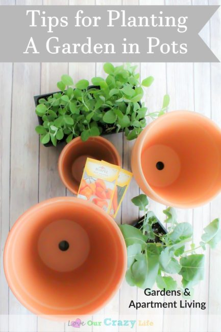Tips For Planting A Garden Using Pots