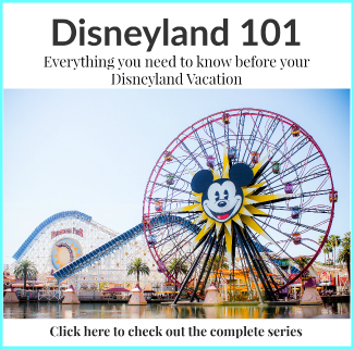 Disneyland 101 Button