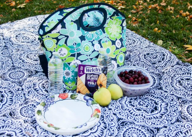 DIY Picnic Blanket with self containing pocket