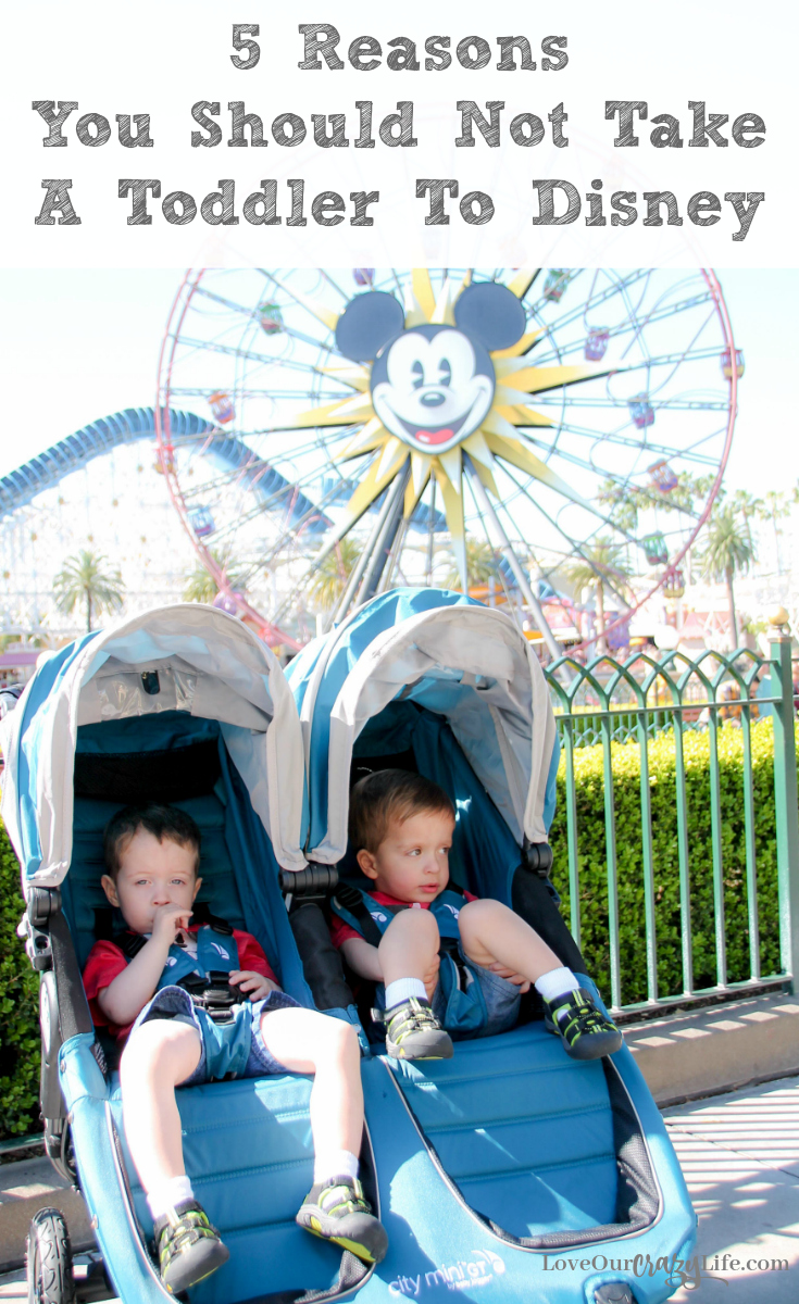 Disney vacation with toddlers- are they a good idea? People feel very passionately on both sides. Check out 5 reasons people give not to go to Disneyland or Walt Disney World with toddlers, and if they hold any water. Family Vacations | Travel with kids | Disney