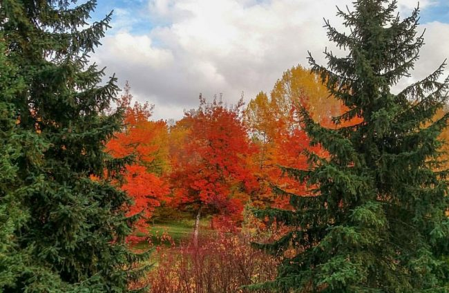 Fall Road Trip Western United States