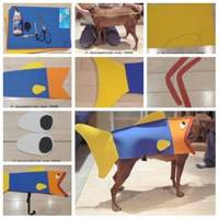 DIY Santa Claus Dog Outfit   LovePetsDIY.com