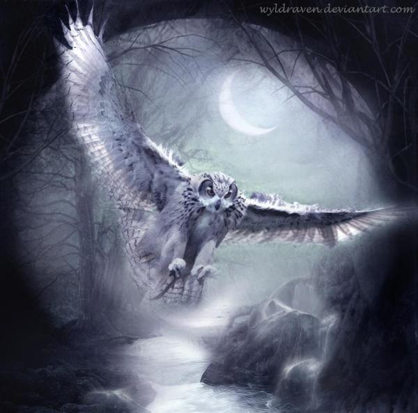 Hoagascht - Wyldraven Dark Lover Of Darkness