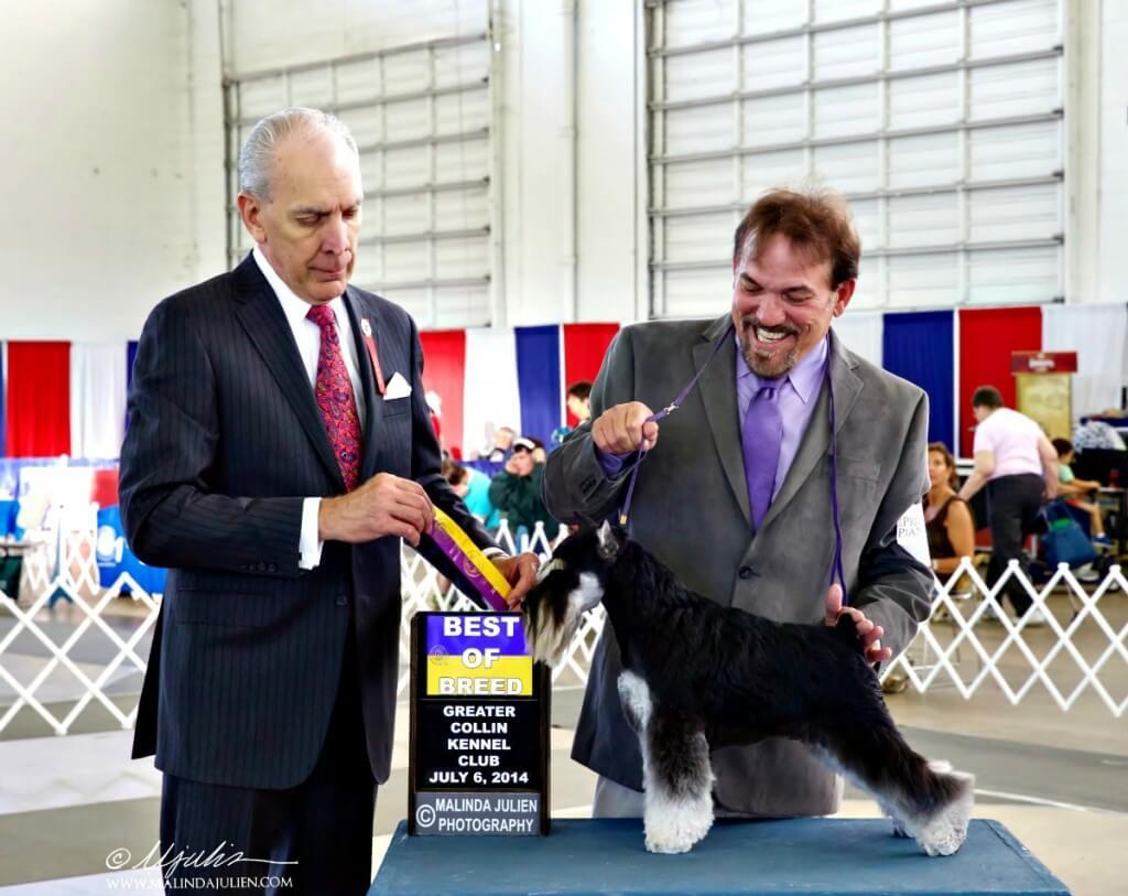 Onofrio Dog Show Dallas