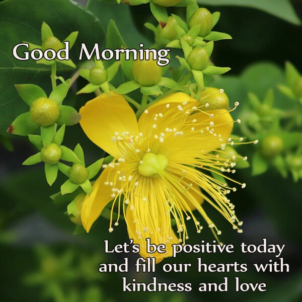 lets be positive today