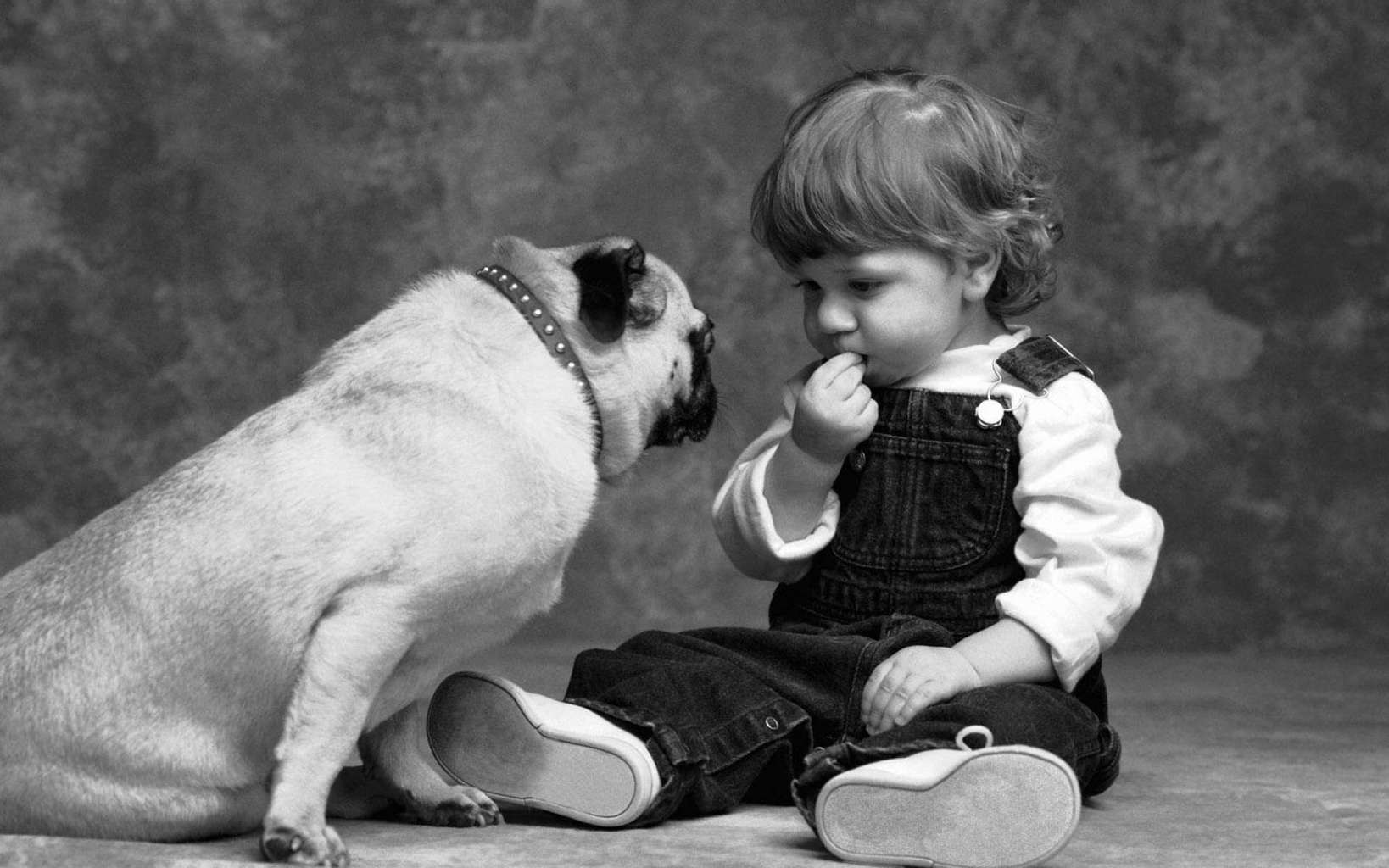 Cute Wallpapers Quotes Friendship Animal Amp Human Friendship Images Wallpapers
