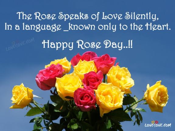 Happy Rose Day Quotes, Status, Images, Pics, Wallpapers, SMS 2019, Happy Rose Day Wishes In English, Happy Rose Day Shayari Images For Facebook, Happy Rose Day Images For WhatsApp Status, Happy Rose Day Shayari For Lover, Best Happy Rose Day Shayari Images, Wallpapers For Love One