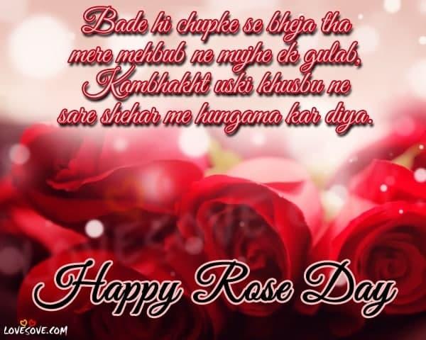 rose day shayari, happy rose day, happy rose day shayari, red rose shayari in english, rose day quotes, rose day status, rose day two line shayari, rose day status 2 line, rose day wallpaper, best wishes for rose day in hindi, happpy rose day cute status, happy rose day 2 lines, happy rose day 2020 hd photo, हैप्पी रोज डे शायरी, लाइन फॉर रोज डे, रोज डे शायरी फोटो डाउनलोड, रोज डे लाइन्स फॉर गर्लफ्रेंड, रोज डे लव शायरी