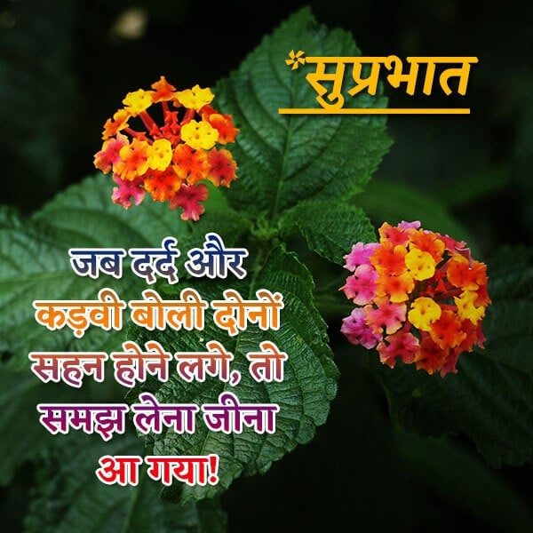 good morning suvichar ke sath, whatsapp good morning suvichar in hindi, good morning suvichar download, good morning suvichar new images