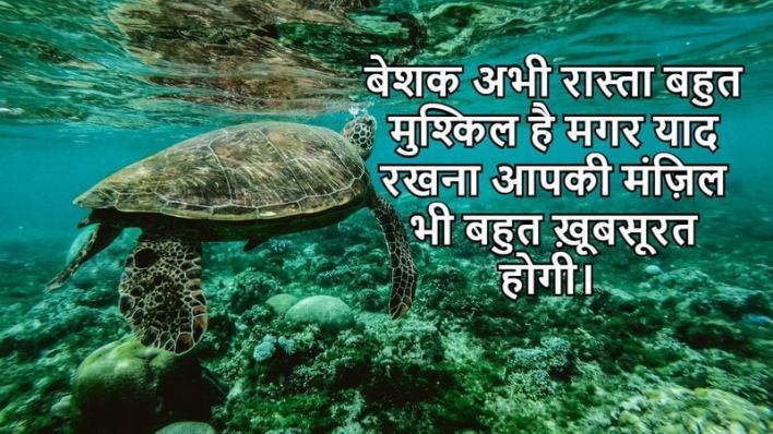 heart touching motivational sms, Inspirational Messages In Hindi, inspirational shayari on life in hindi, inspirational quotes in hindi, inspirational quotes in hindi in timeline,