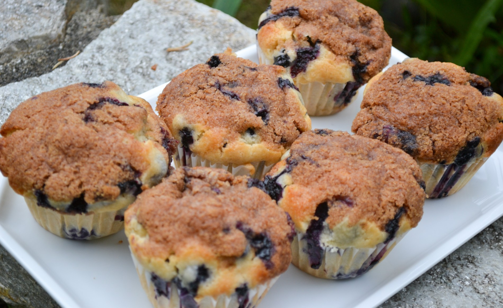 These are the best blueberry muffins ever! They're sweet, moist and buttery.