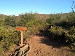 Common Mistakes Hikers Make on the Trail
