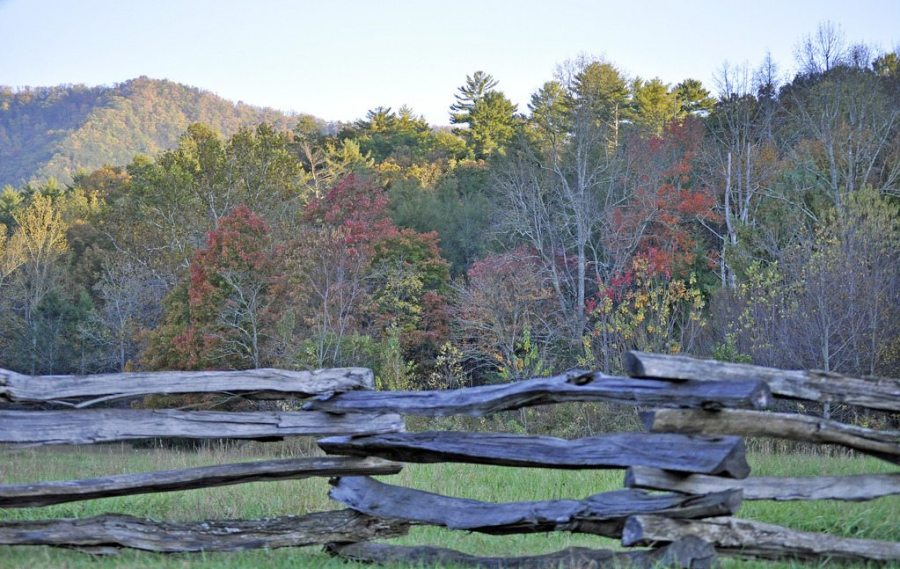 hikes, fall, fall foliage, autumn
