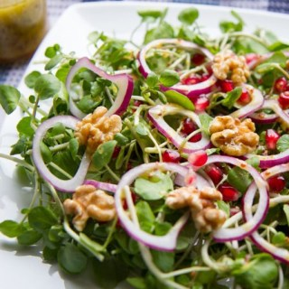 Watercress, red onion, and pomegranate salad.