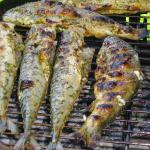 Cooking Fish over a Campfire