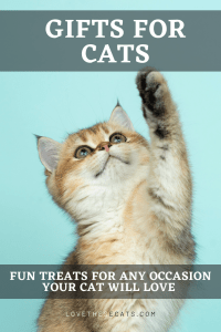 Read more about the article Gifts for Cats