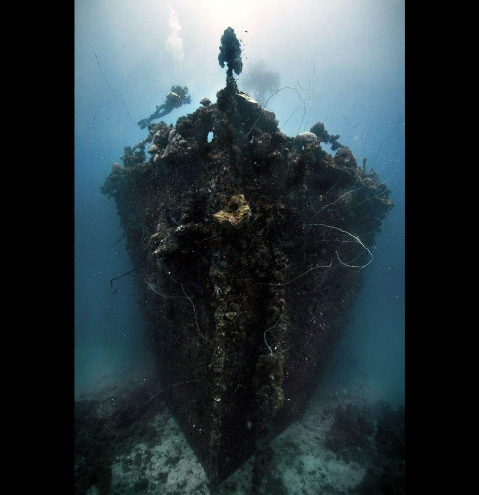 The bow of the Unkai Maru in Truk Lagoon, Micronesia