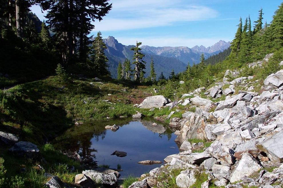 Enchanted Valley, Olympic National Park