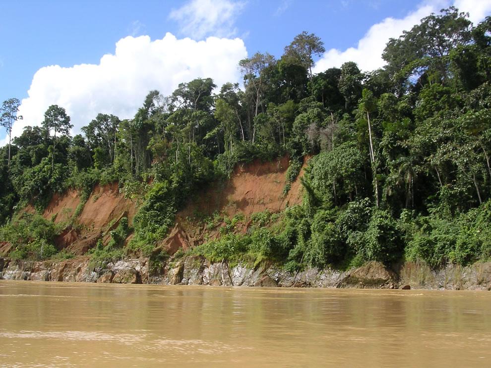 Amazon, Tropical rainforest,   Peru