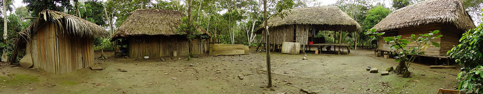 Native village of Chipitiere, in the Cultural Zone of Manu National Park, Peru