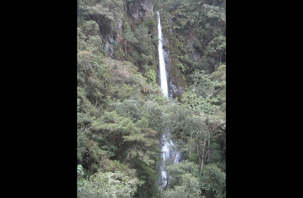 Waterfall flowing from the Andes down in the Amazon Basin